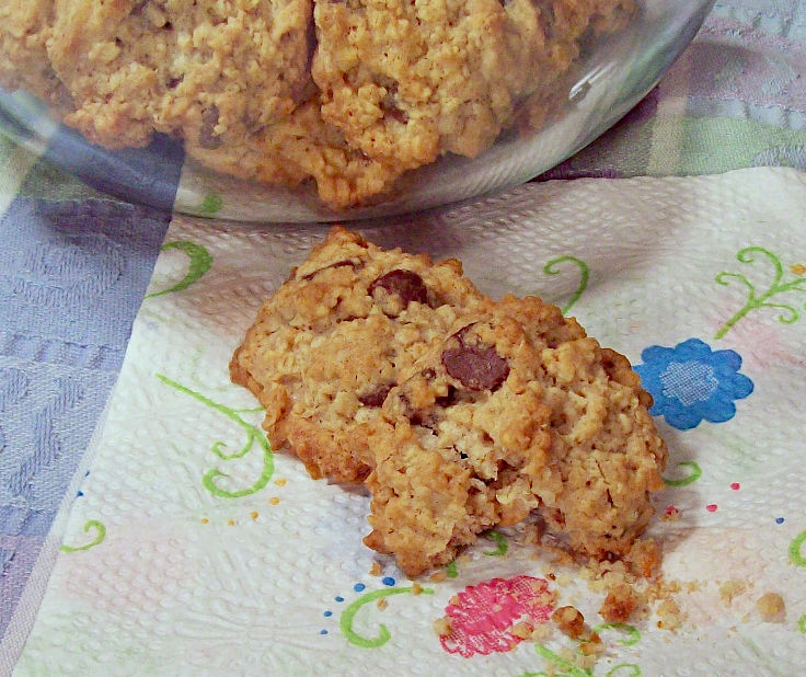 Oatmeal Chocolate Chippers
