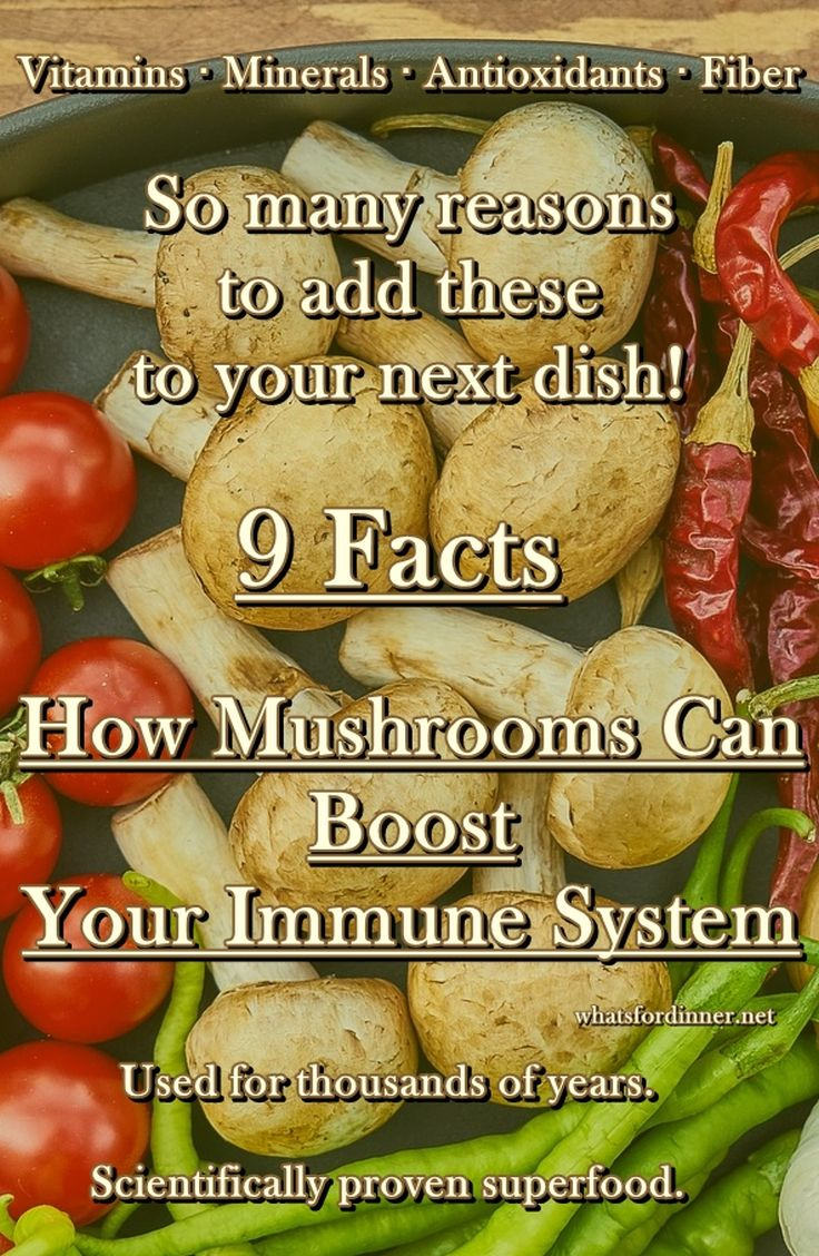 9 Facts - How Mushrooms Can Boost Your Immune System