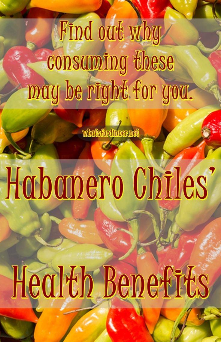 Habanero Chiles' Health Benefits