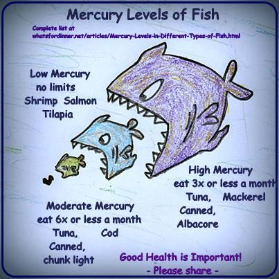 Mercury Levels in Different Types of Fish
